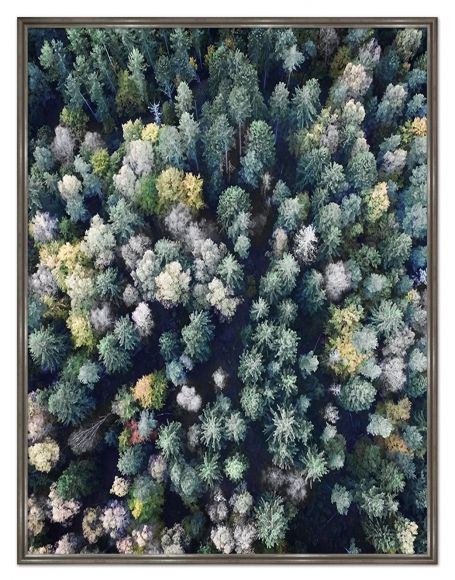 Spring Trees photography in a standard factory frame.