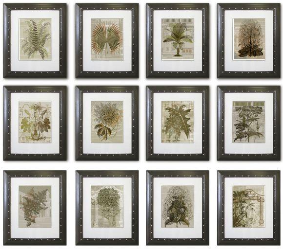 Architanicals in Deluxe Handmade Frames