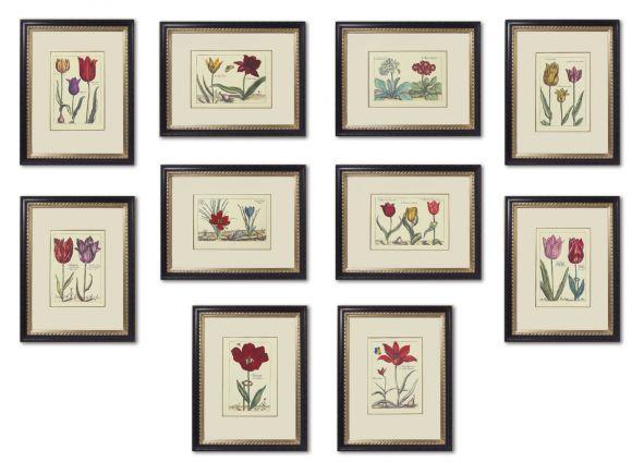Crispen De Passe Botanicals in Deluxe Handmade Frames