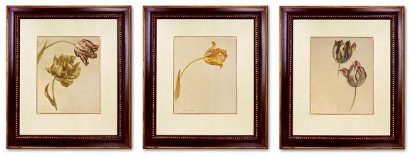 Huysum Tulips in Deluxe handmade Frames