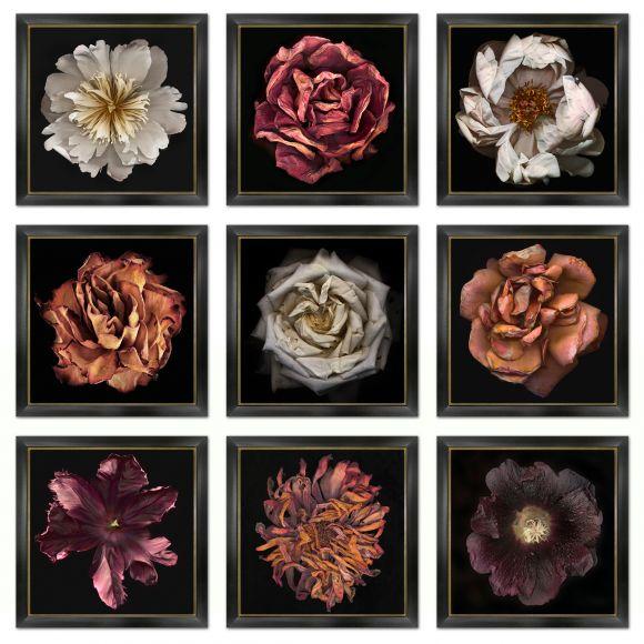 Miranda Photography in deluxe handmade frames
