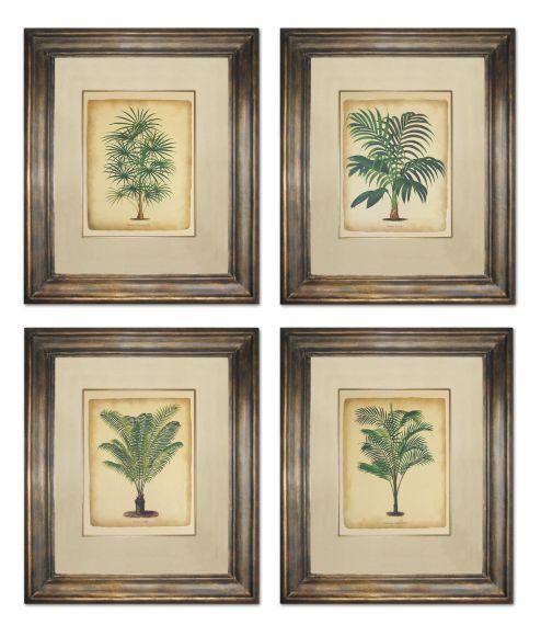 Pannemaeker Tropical Trees in Deluxe Handmade Frames