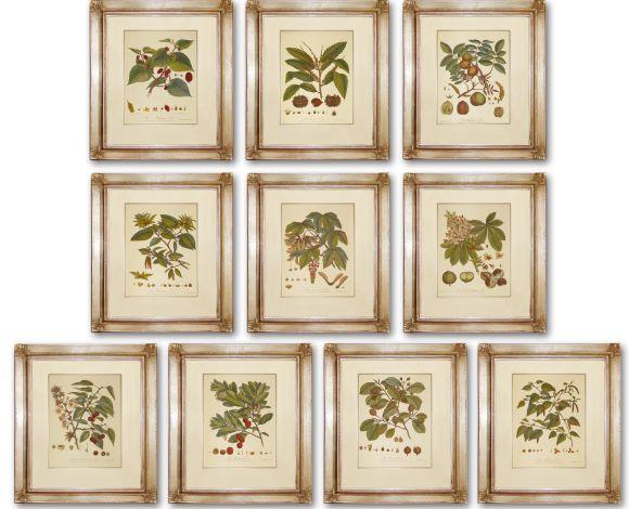 Rosenhof Leaves in Deluxe Handmade Frames