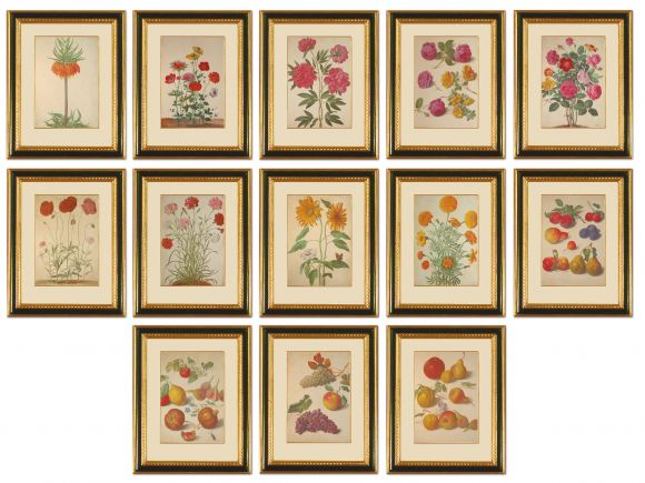 Walther Botanicals & Fruits in Deluxe Handmade Frames